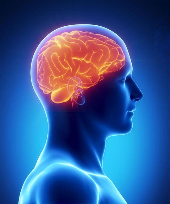 UniBrain - Dưỡng chất điều trị thiểu năng tuần hoàn não, suy giảm trí nhớ