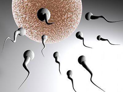 Giải pháp cho bệnh vô sinh ở nam giới